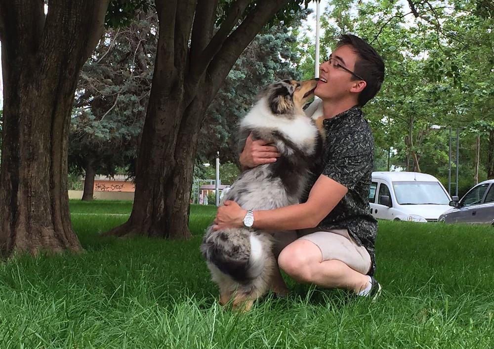 Pasear con tu perro