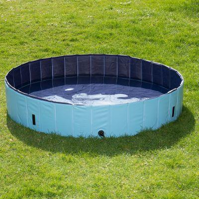 piscina perro