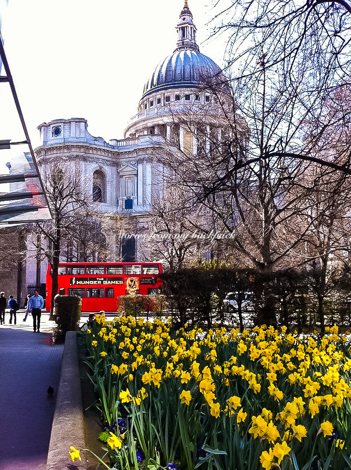 St. Paul's Cathedral, Big Ben, Palace of Westminster, Things to do in London, London on a budget, Free things to do in London