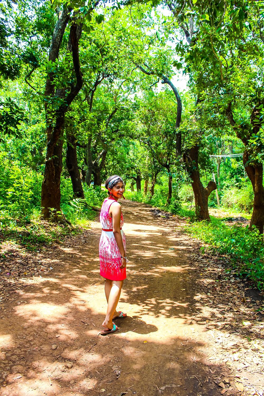 Yercaud, salem, weekend getaway from Bangalore, Bengaluru, hill station, Tamil Nadu