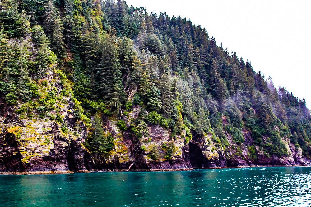 anchorage, Seward, Alaska, Seward cruise, keno fjord cruise