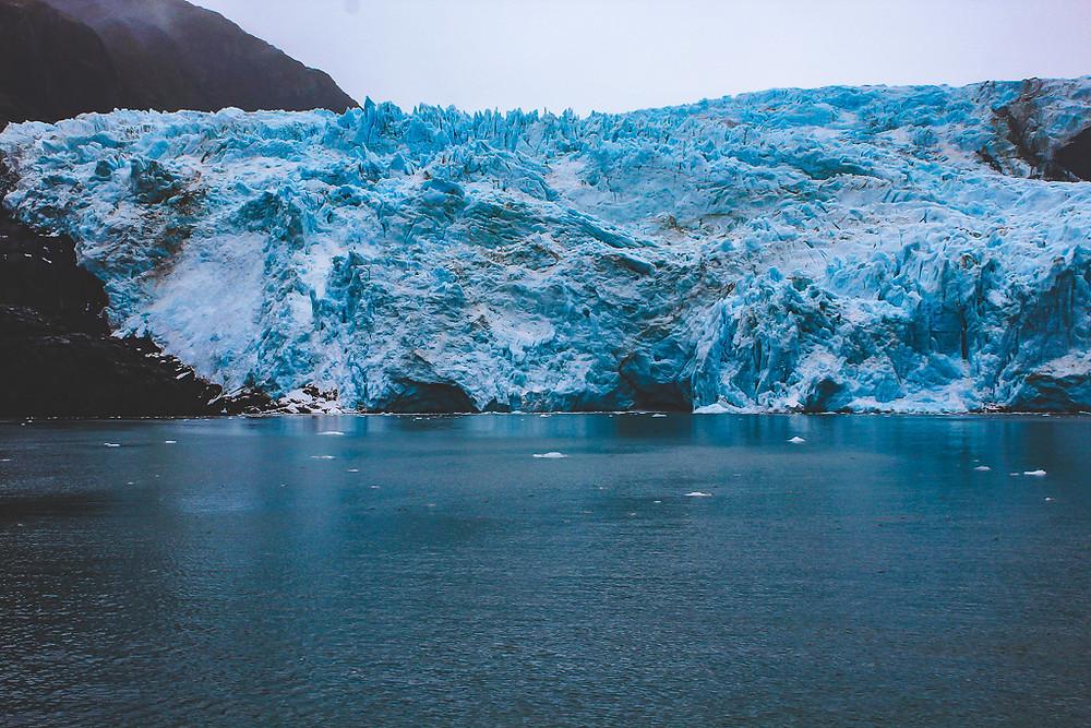 Glacier, kenai fjords, kenai fjords kayak, whale watching cruise, humpback whale, blue whale, orca, otter