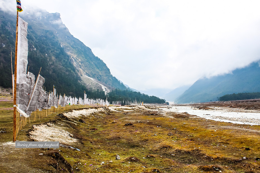 Yumthang Valley, Yumthang Valley of flowers, Yumthang temperature, Yumthang Valley permit,  Yumthang sikkim tourism, Yumthang Valley things to do, how to reach Yumthang Valley