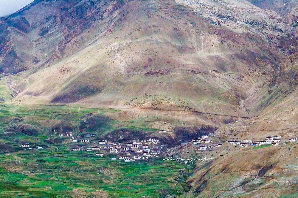 Kibber things to do, Kibber homestay, how to reach jibber, how to travel in spiti, things to do in spiti