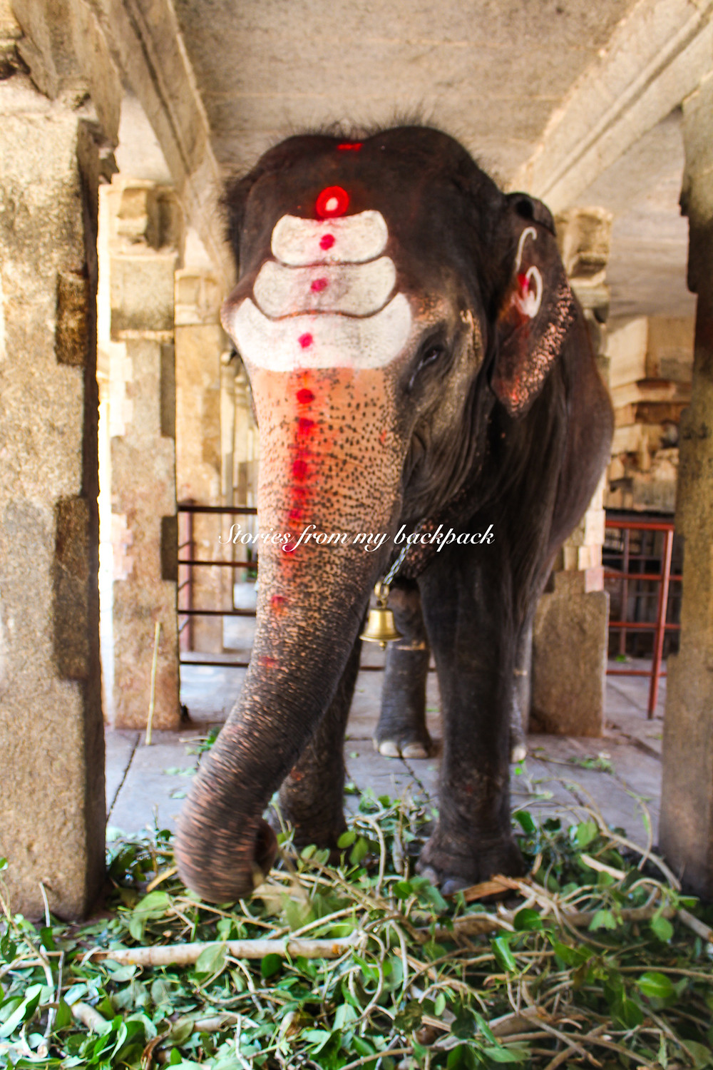hampi, musical pillars of Hampi, best temples in Hampi, Hampi tour, things to do in Hampi, Vijaya Vittala temple Hampi, Lakshmi elephant in Hampi