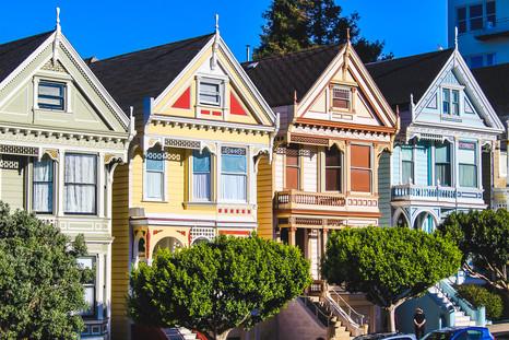 Painted Ladies- San Francisco