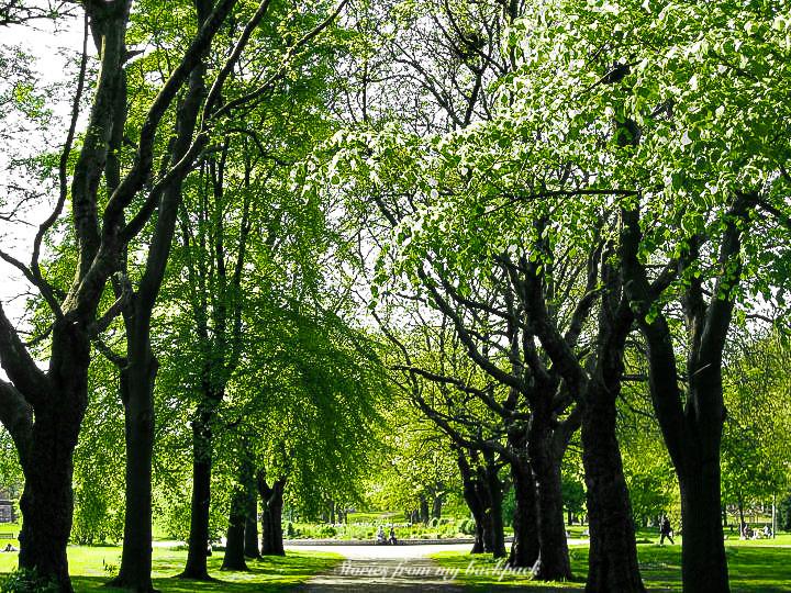 Manchester parks, Whitworth Park, fallow field park, Sackville Gardens