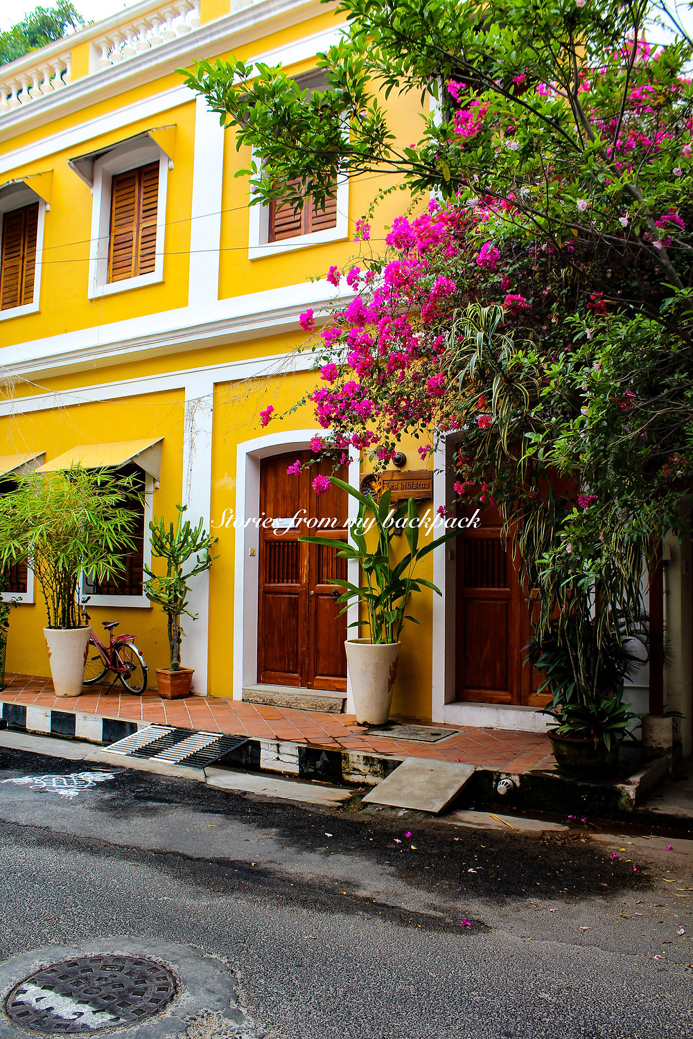 Auroville things to do, where to eat in Pondicherry, things to do in Pondicherry, bana ride in Pondicherry, scuba diving in Pondicherry, surfing in Pondicherry