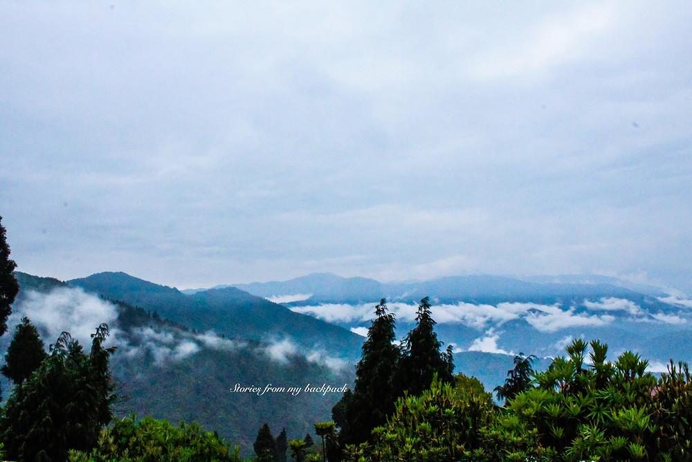 darjeeling sightseeing, darjeeling things to do, darjeeling tea estate, darjeeling attractions