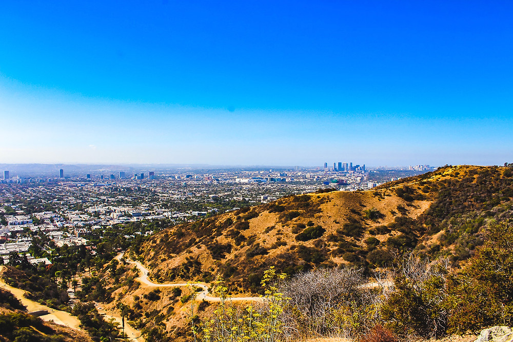 Hiking trail, Runyon canyon, dog friendly park, Los Angeles hike