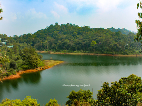 A detailed guide to Wayanad, Kerala