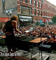 Chicago Neighborhood Festivals - Wait Here Chicago Luggage Lounge / Chicago Things to Do / Nonya B