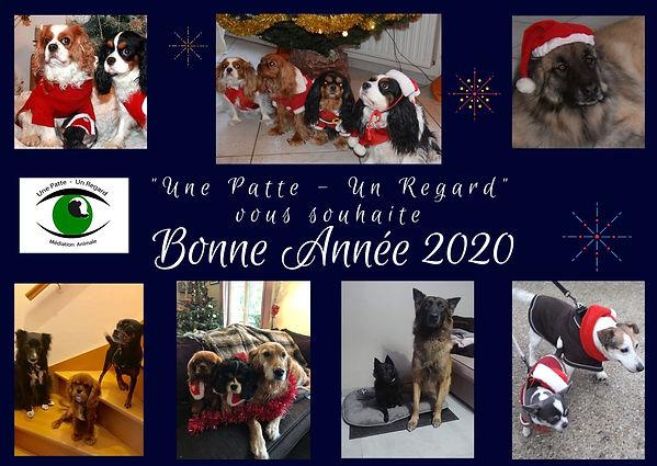 Bonne_Année_2020.jpg