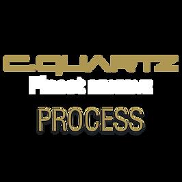 cqfr-process.png