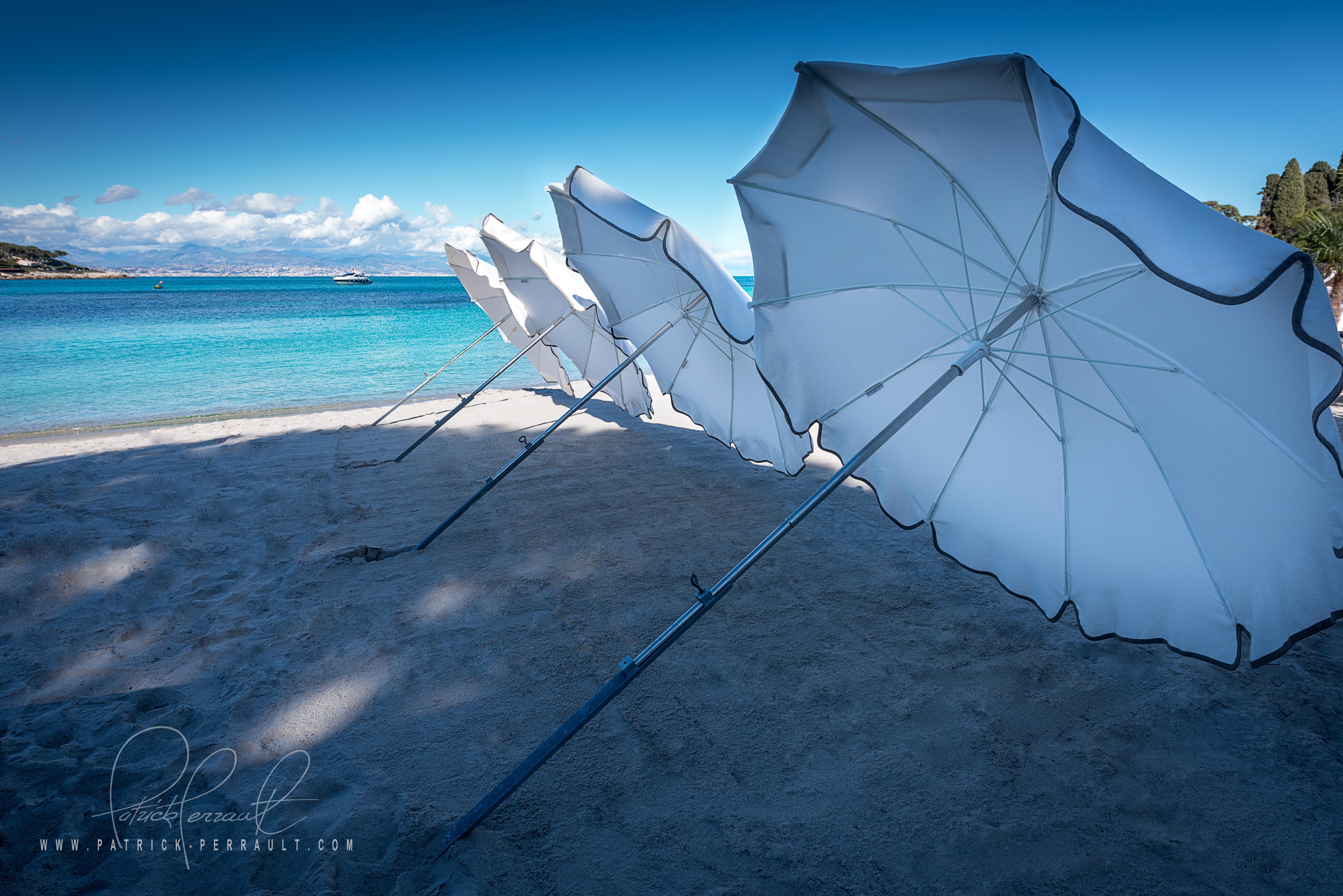parasol garoupe