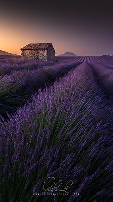 4- Provence wallpaper