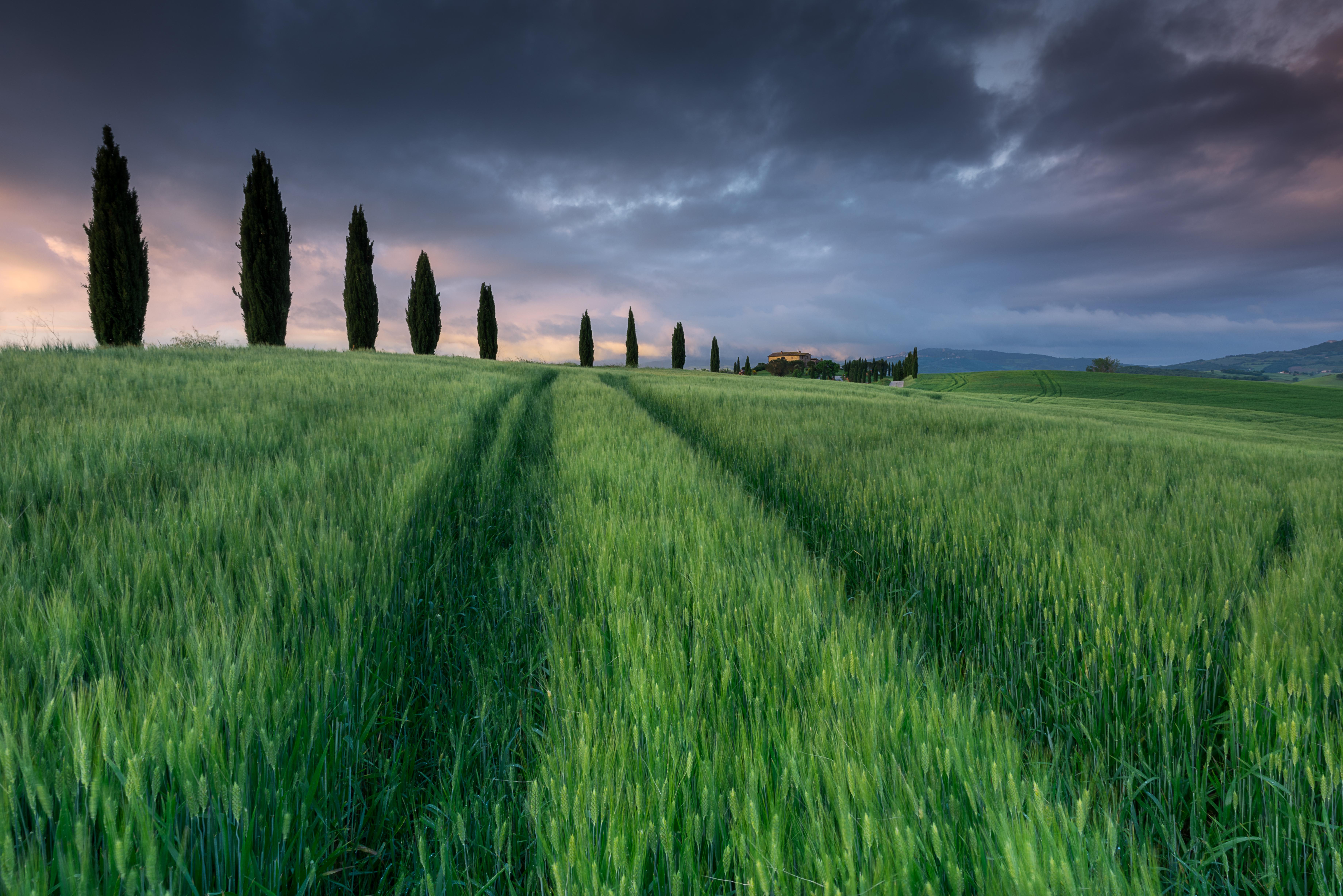 8- Italia