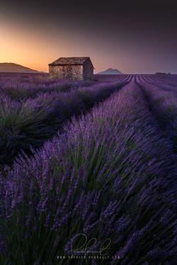 1- Provence