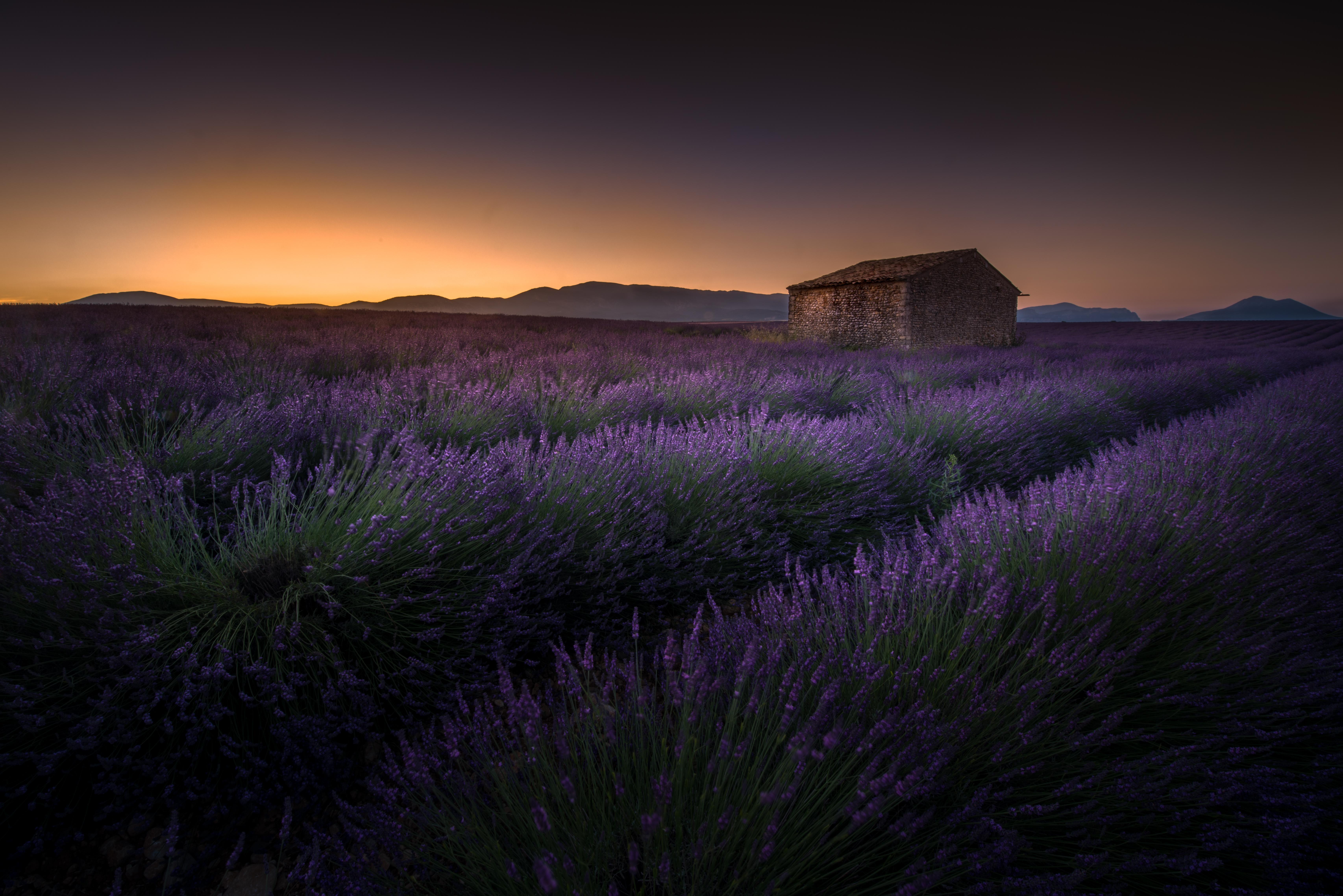 2- Provence