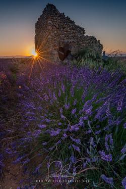 17- Provence