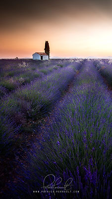 1- Provence wallpaper