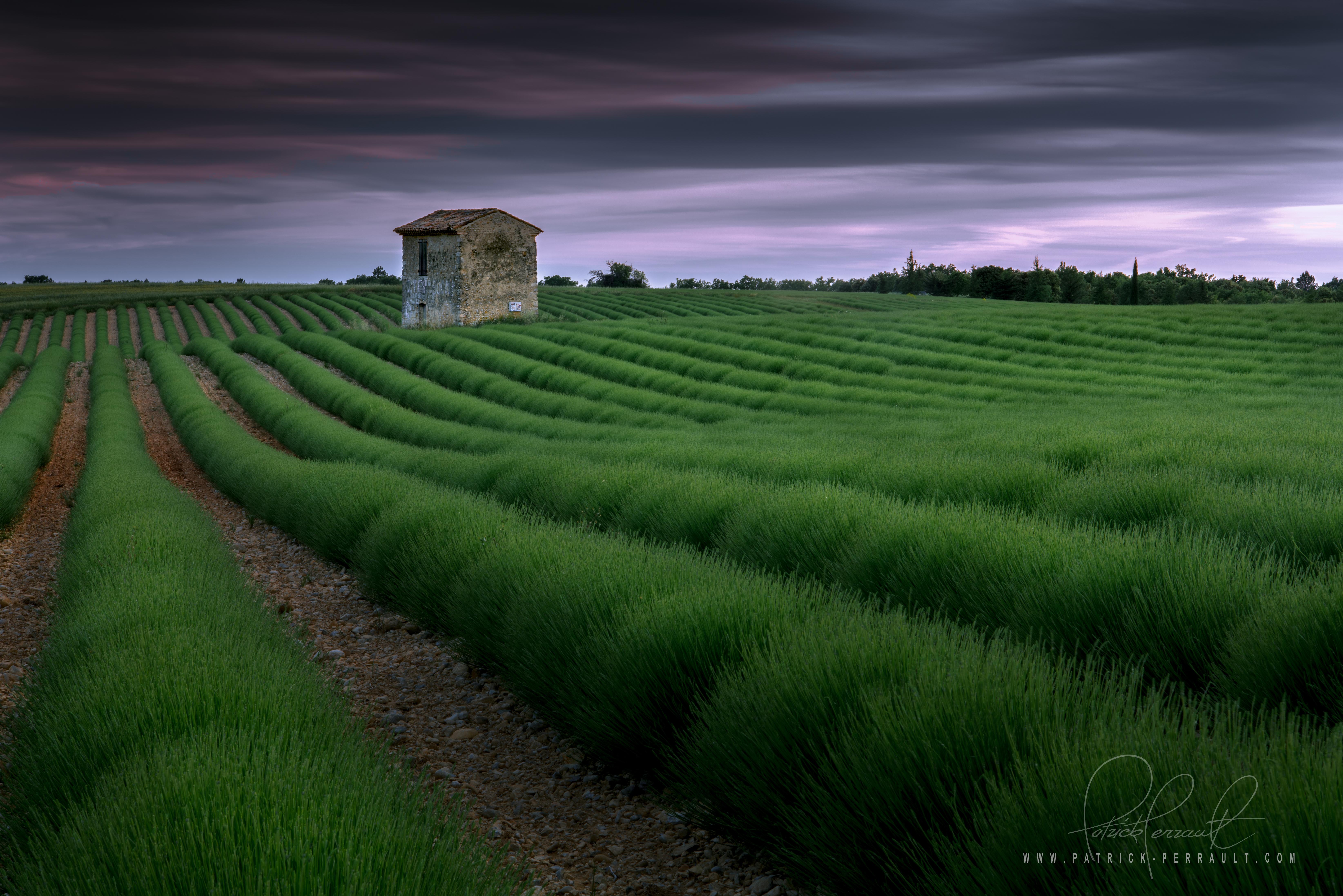 10- Provence