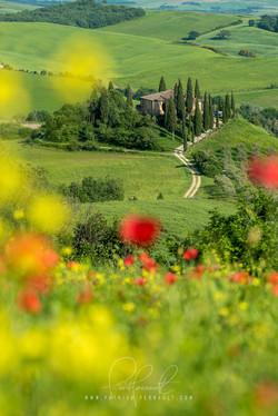 19- Italia
