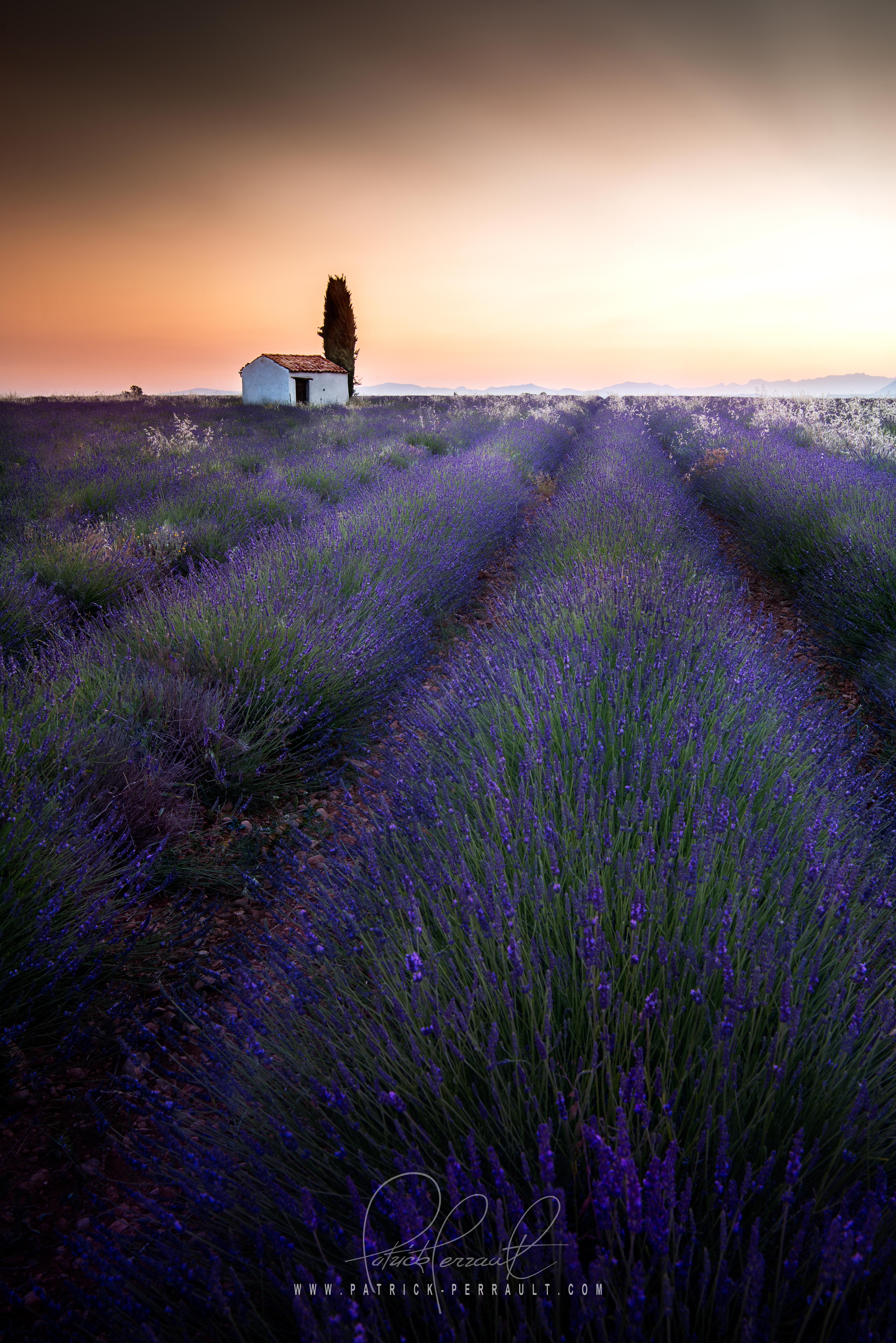 3- Provence