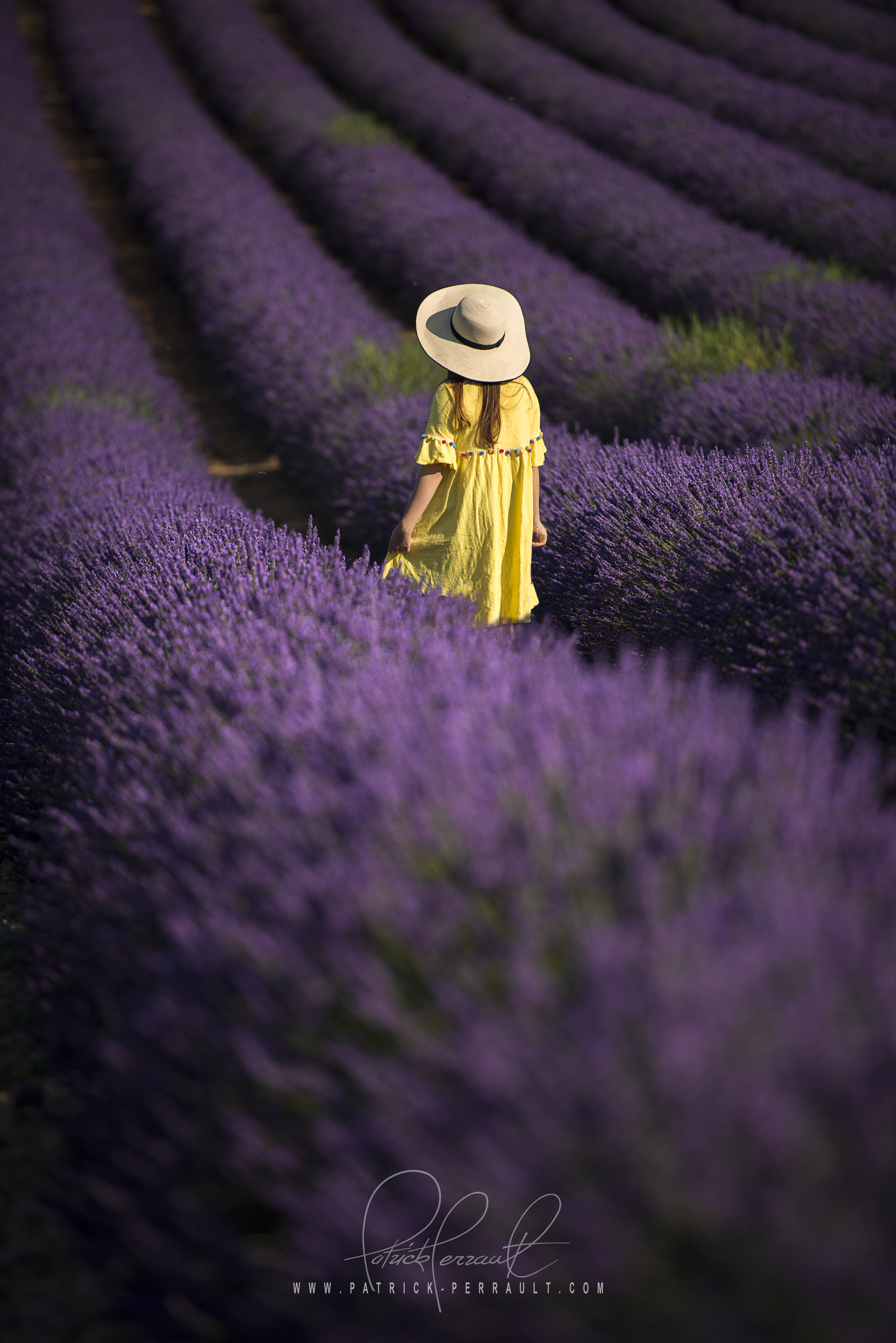 20- Provence