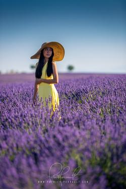 19- Provence