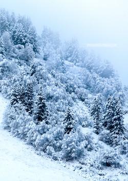 30- Alpes