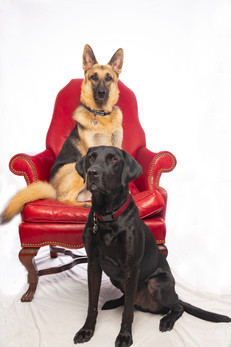 Cali and Mi Hijo Red chair.jpg