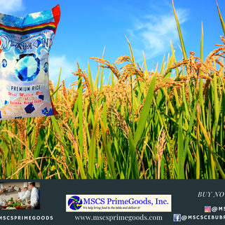 Rice Dealer and Supplier (MSCS)