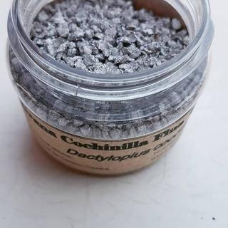 Grana cochinilla de Nocheztlicalli