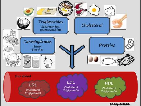 0023 – Cholesterol: good or bad?   Part I