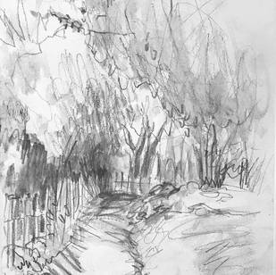 Path to the Pond