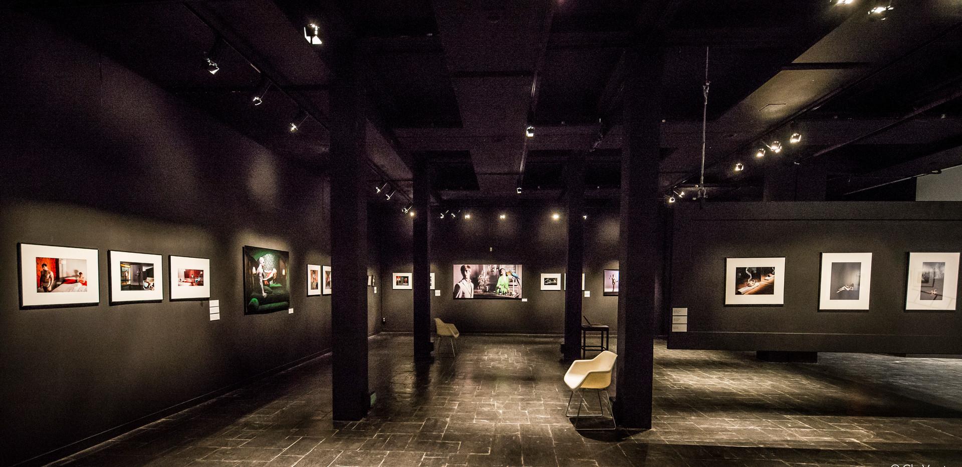 Exposition Cédric Roulliat : Plaisir des souvenirs évanouis