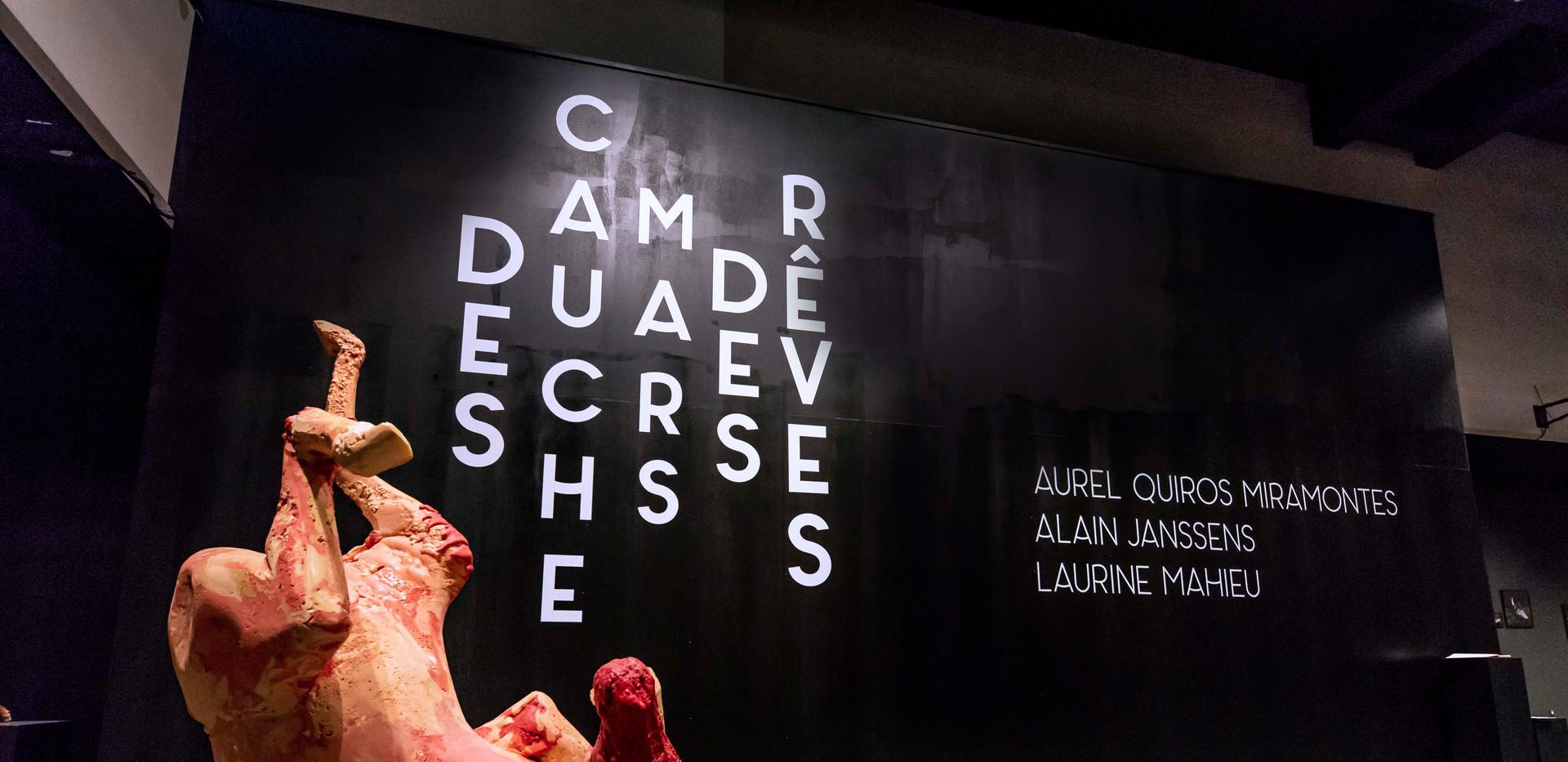 """Exposition """"Des cauchemars, des rêves"""" avec les oeuvres de Laurine Mahieu, Alain Janssen et Aurel Quiros Miramontes"""