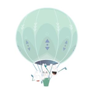 luchtballon Nellis