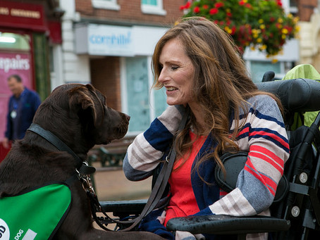 Sense & Sensibility to Support Dogs for Good