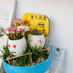 【Gallery】盆栽作品展