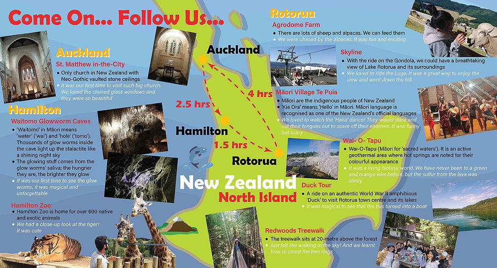 newzealand_.jpg