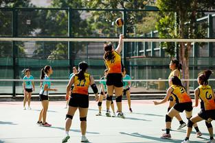 【學生成就】女子甲組排球以全勝姿態進入下一圈比賽