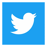 twitter-icon-square-logo-preview-400x400