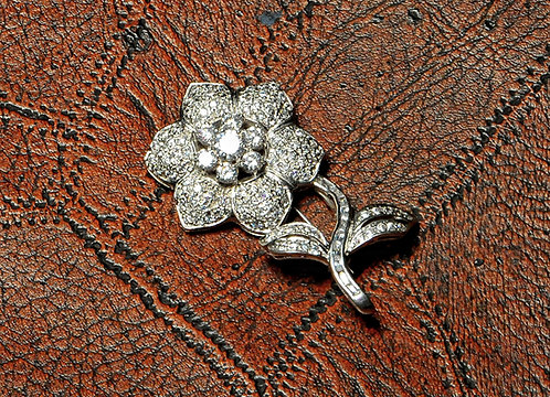 Flower Narcissus | Silver