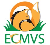 ECMVS_versao3.png