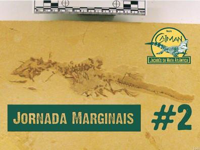 """A história dos jacarés e seus ancestrais - Jornada """"Marginais"""" Cap.#2"""