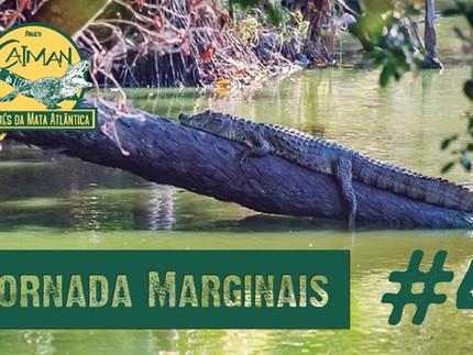 "Os Jacarés do Brasil - Jornada ""Marginais"" Cap.#4"