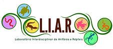 logo LIAR.jpg