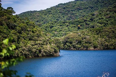 201203010097-Floresta e Lagoa (paisagem) - Forest e Lagoon.jpg